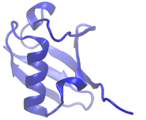 Cartoon diagram of a protein
